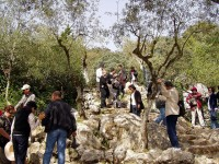 The town of Fatima – miracles, apparitions and secrets