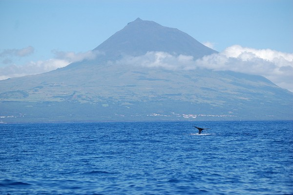 The Azores, Pico Mountain, ©salady/Flickr