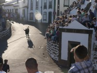 Best summer festivals in the Azores – sports, bullfights and wine